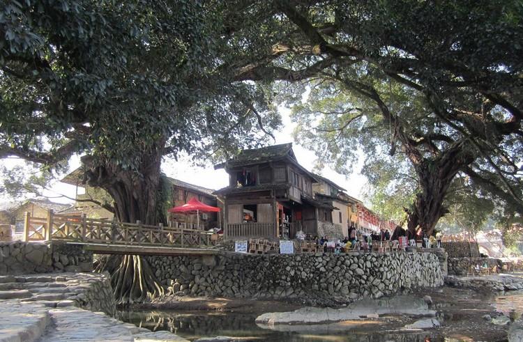 这个历史悠久的古村,拥有幽长古道、百年老榕,以及灵山碧水,无不予人超然之感。