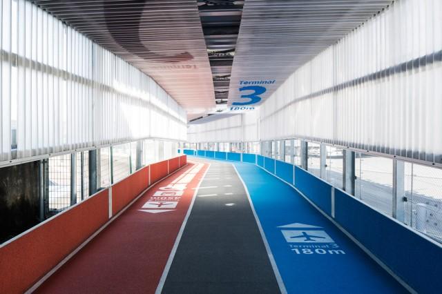 terminal31