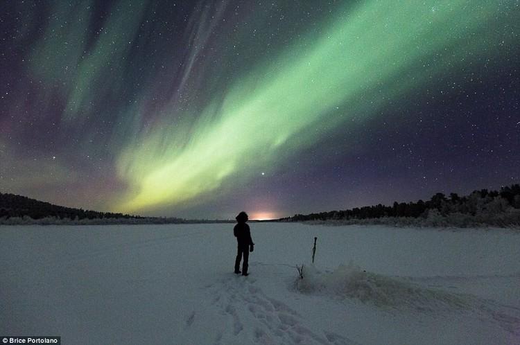 廷加与北极光。