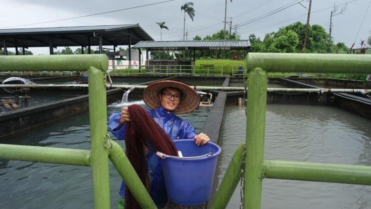 黄玉明的儿子目前接手父亲的工作,继承独家养鱼技术。
