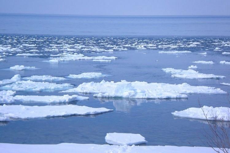 """知床是日本东北部北海道的一个半岛,属知床国立公园。知床的地形,是因火山爆发后堆积隆起而成。在原住民爱奴语中,""""知床""""被译为""""大地尖端"""",虽然面积不大但地形复杂,在短距离范围内就可见到许多种类的高山植物。知床也是全世界能看到流冰一景的最南端,相较于其他地区,知床的海域最早融冰,因而成为大量浮游生植物的环境,成了海洋生物滋养的来源。"""