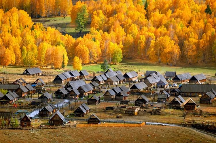 秋天的禾木村是北疆最美的一幅景致。