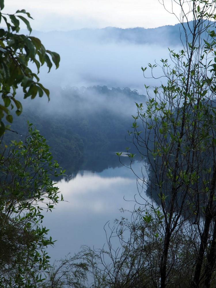 雾气萦绕的东山。