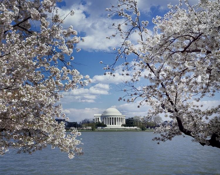 春天的纪念馆旁伴以美丽的樱花,是游览的最佳时节之一。