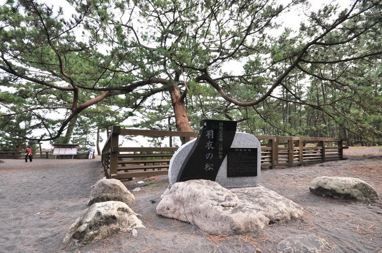 羽衣之松 据说当年天女的羽衣,就是挂在这一棵松树上。