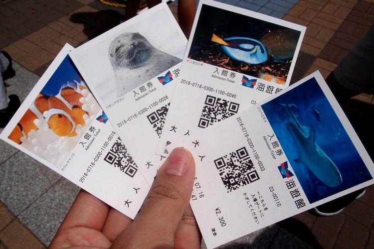 值得收藏的票根,每张票都有不同动物的照片,大爱!
