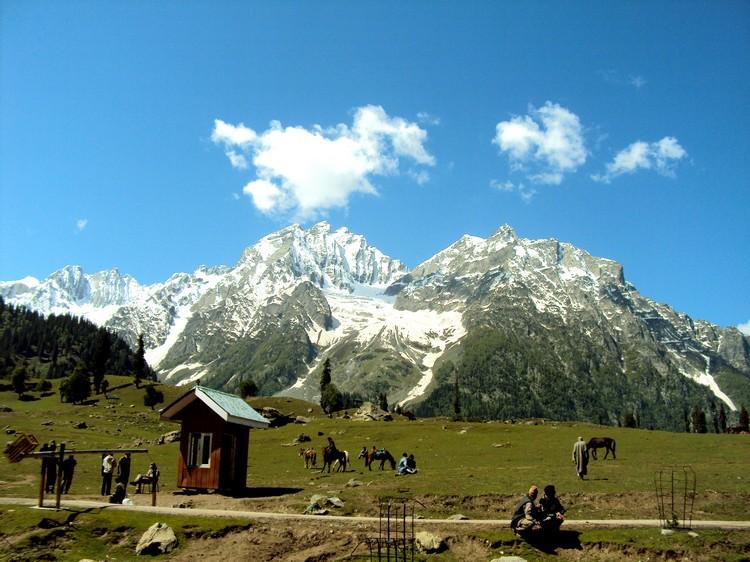"""3. 松那玛格 (拉达克) 松那玛格在印度语中有""""金子般的草地""""的意思。这里的冬天将会被白雪覆盖,但到了夏天则会绽开遍地黄花,身体力行展现其印度语中之意。"""