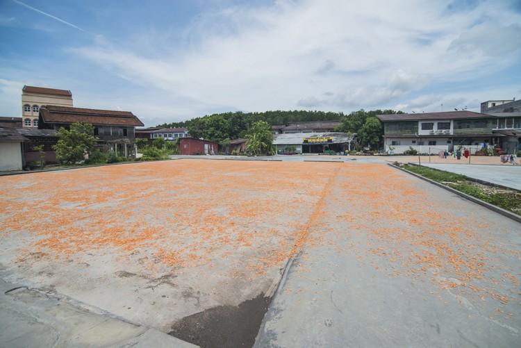 十八丁盛产虾米,是不少游客必败手信之一。