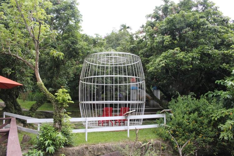 当人们坐在笼子里,就能体会动物长期被人类关在笼子的心里恐惧与束缚感。