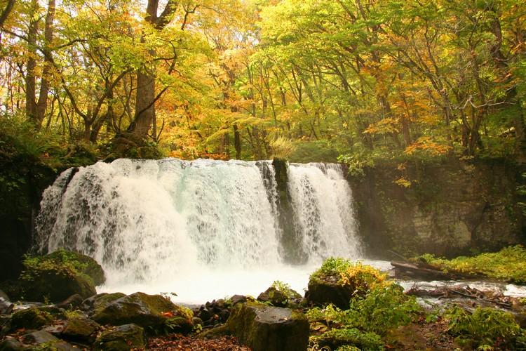 桃子大泷,奥入濑最大的瀑布。