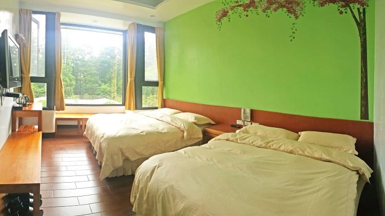 彩虹楼套房自然绿色主题