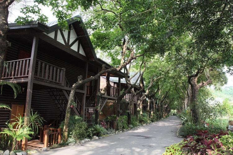 树木环抱环境优美的度假屋