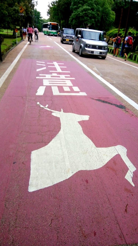 马路没有马,但有鹿。有鹿出没,请注意。这也算是奈良仅有的交通指示。
