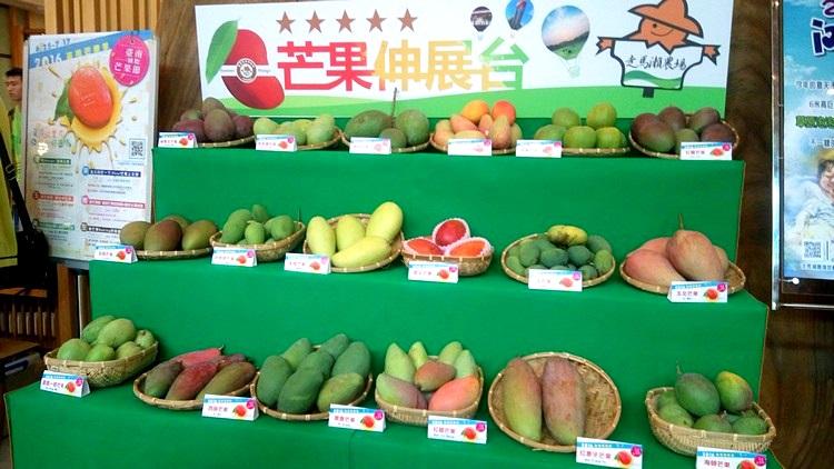 芒果品种有多少种?伸展台一看就明了!