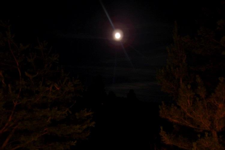观看星辰的那晚,在房间扳开窗帘,正好遇上一轮明月高高挂。