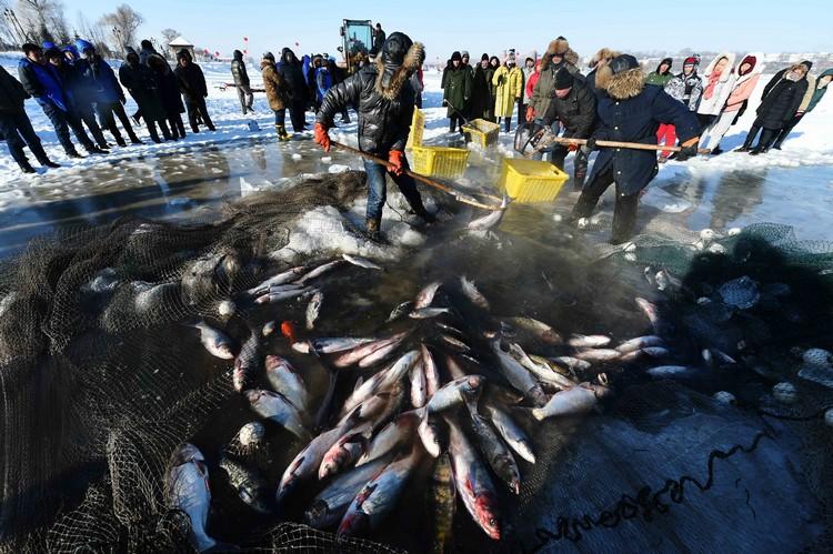 """被称为""""鱼把头""""的渔夫,每年都会在此遵循古老的捕鱼方法,将湖里的大鱼捞起。"""