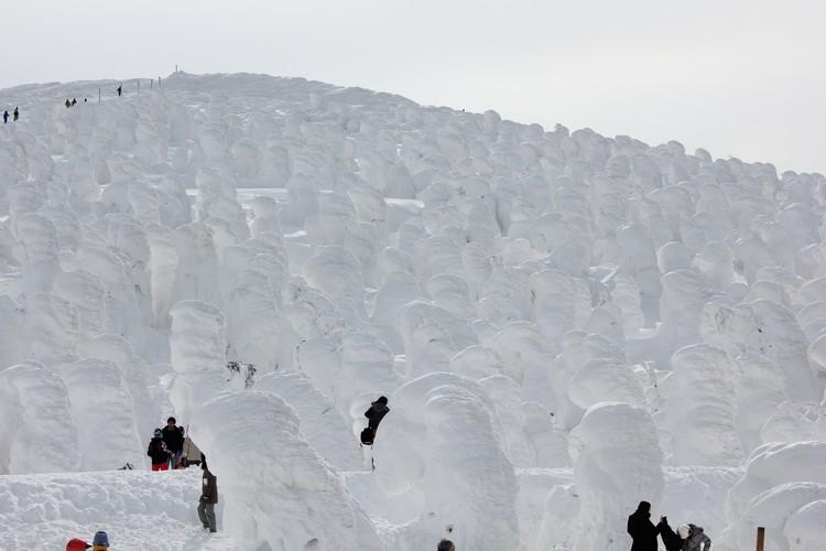 也可以在既定的范围内走近雪怪,和雪怪近距离接触。