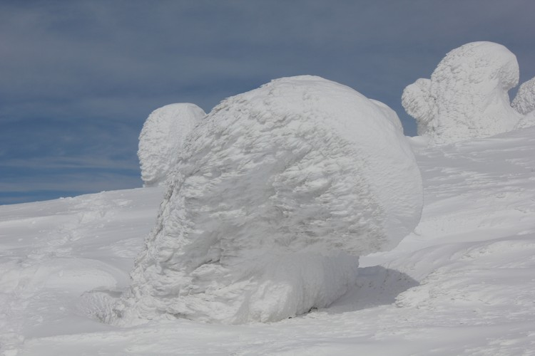 雪怪形状各异,见到时,尽情发挥自己的想象力吧!