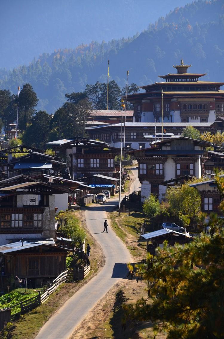 Gangtey Goempa 就在进入岡帖谷地的山上。