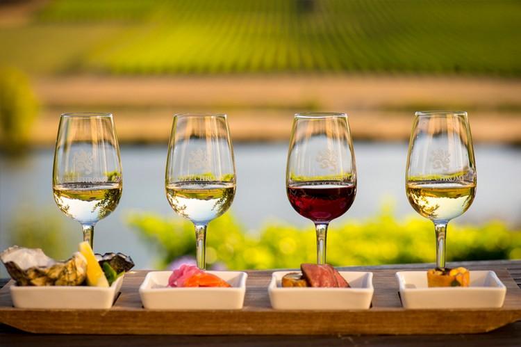 Tamar Valley- JosefChromy Winery 2