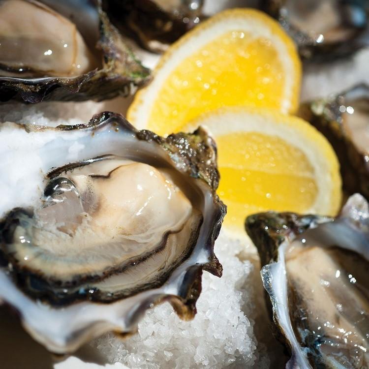 Tasmania-Oysters