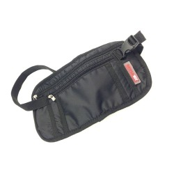 Apple Travel Pouch