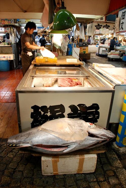 到筑地市场(Tukijishijo)看大鲔鱼