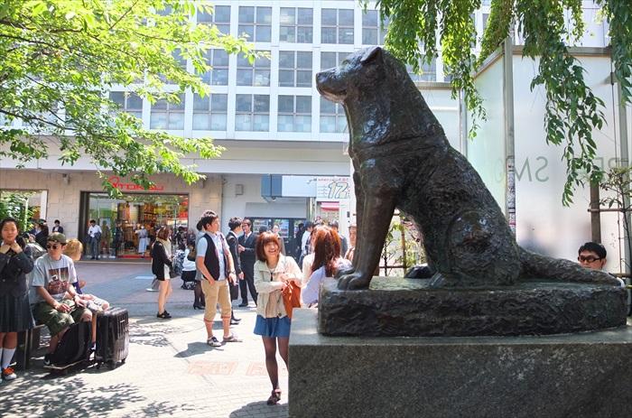 """涉谷的""""忠犬八公""""铜像源自真实故事"""