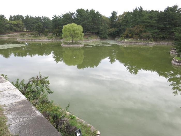 记载当年的池塘