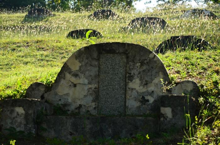 古墓林立的三宝山。