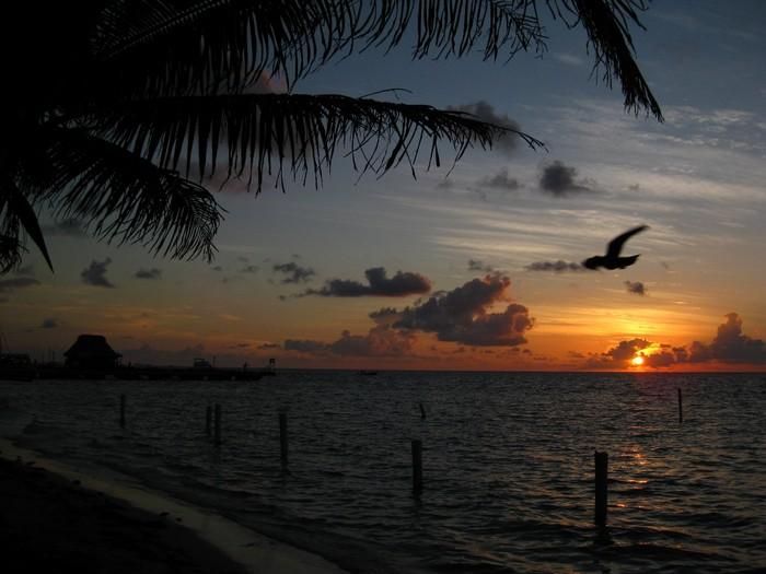 加勒比海的日出