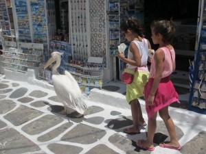 小孩总是充满好奇心,在后跟着不知何处去的它。