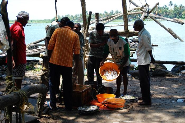 渔民把捕获的渔获当场售卖。