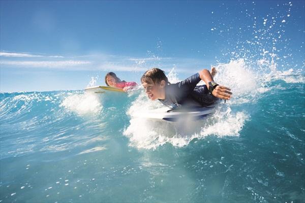 畅泳于太平洋的湛蓝海水中。