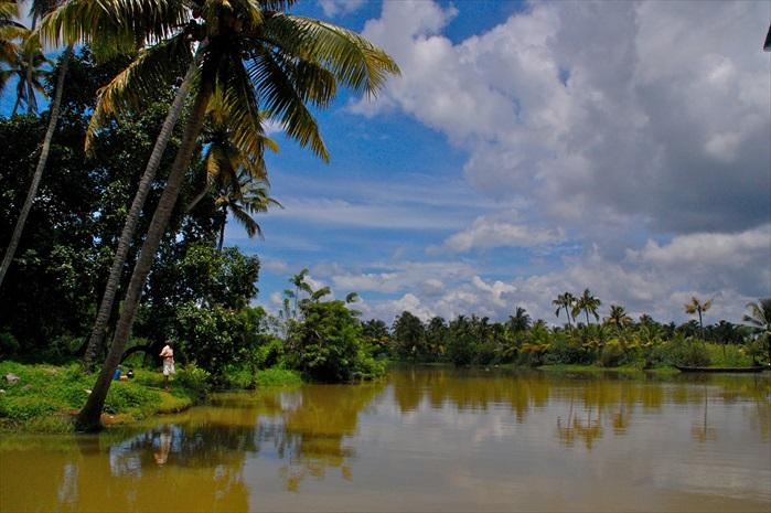 Backwaters水乡景色。