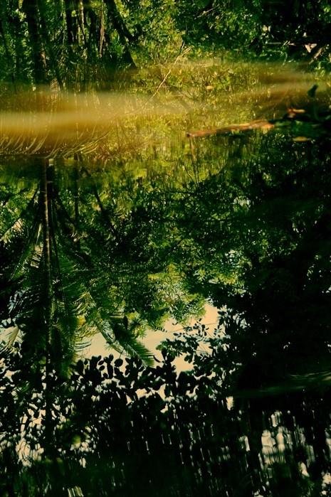 映在水面的景色,如此清晰,似真似幻。