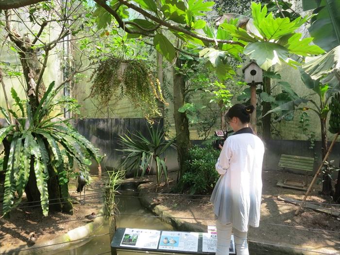 园区致力于拟造自然生态园区。
