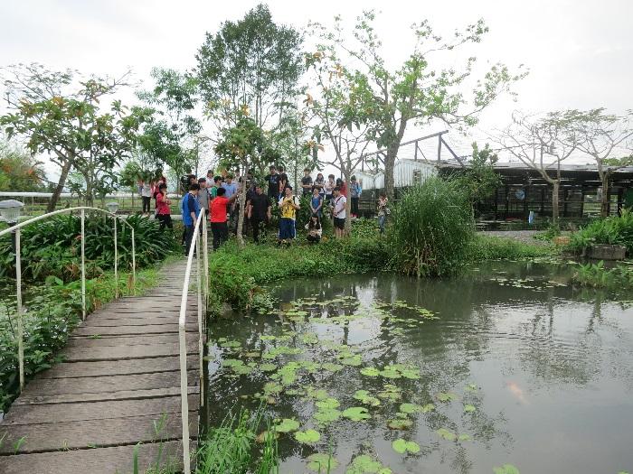 许多团体前来学习观摩,体验水草农场的特别之处。