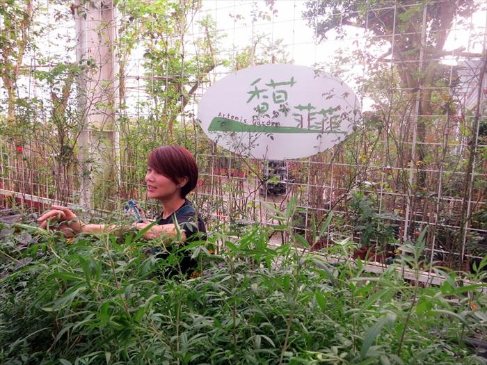香草菲菲栽种多种香叶植物,逐一闻闻各种植物的天然香气,再交换感觉,也是一种乐趣。