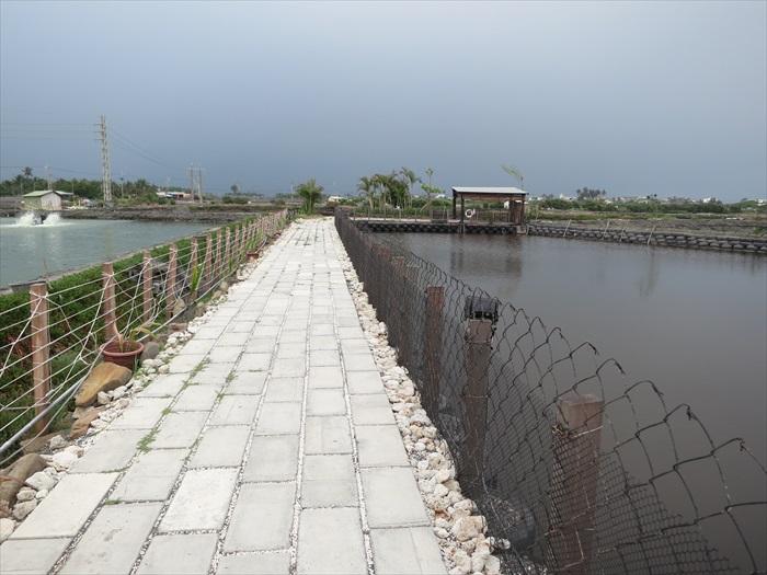 园区内的道路等基础建设,都是采用生态工法修筑而成。