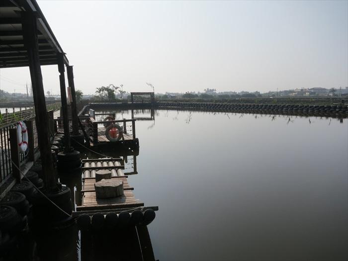 让人放松的景观,水池里饲养者石斑鱼。