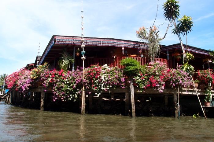 当船拐了个弯儿,看见这爱花之人的水上人家。在阳光的照耀下,为之鲜艳。