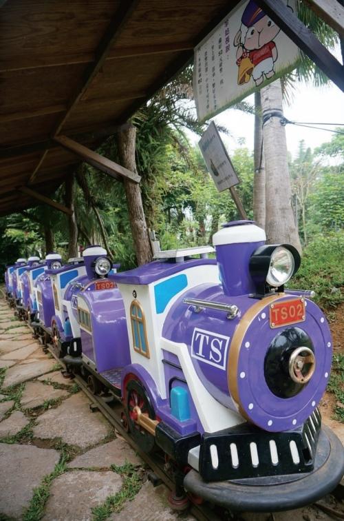 大人小孩都喜爱的森林小火车。