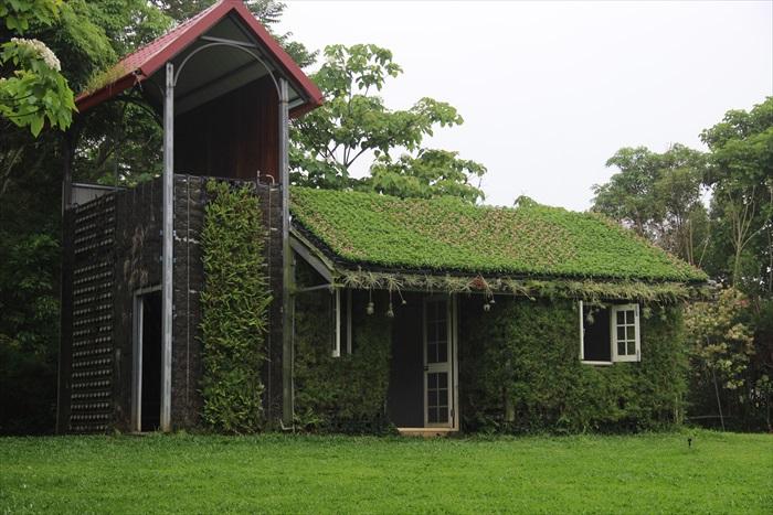 其中一栋攀满花草的建筑物。