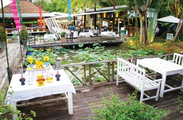 在这样的景色中用餐,真的有在丛林里吃饭的感觉。