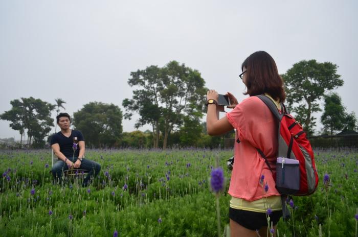 花露农场内有一大片的薰衣草园,园主还贴心在园中准备了椅子供游客合照,来到这里还不拍照等什么?!