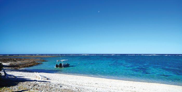 伊莉特夫人岛旅游资讯