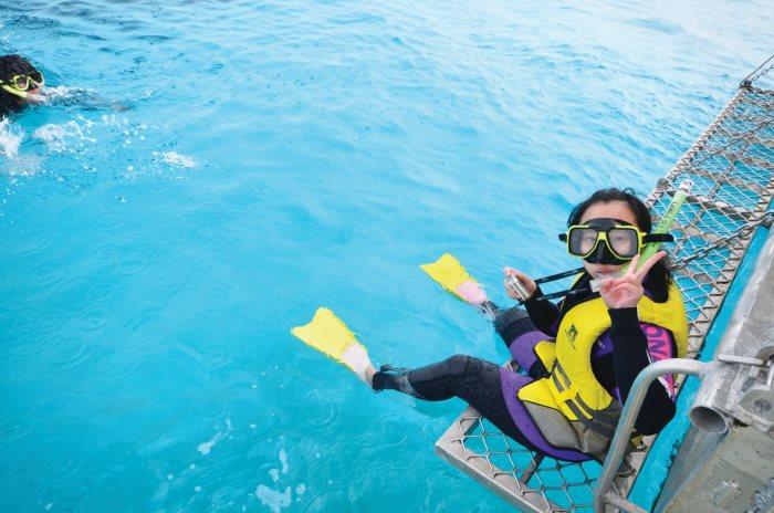 """在《Lady Elliot Island- Great Barrier  Reef Australia》一书中,开头的一句话,就道出:""""伊莉特夫人岛是大堡礁内一个神奇的地方"""",这同时也说出了我的心声。"""