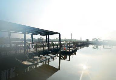 清晨,带着雾气的天地宽鱼塘看起来很梦幻,鱼塘里养的是石斑鱼,喜欢垂钓的话,莊园也有准备钓竿渔具共住客享受垂钓的乐趣。