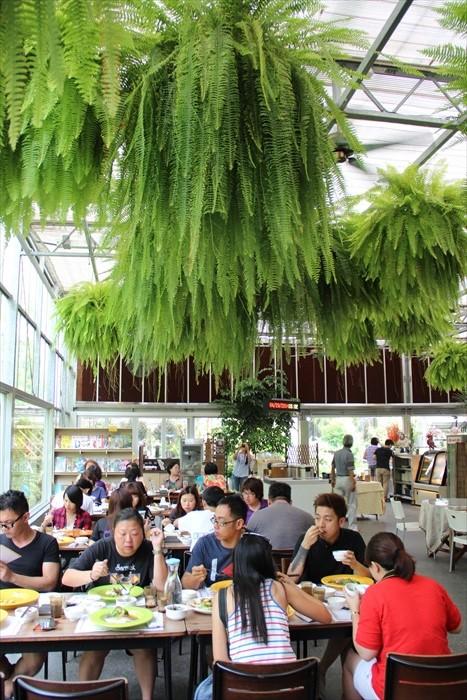 人与植物共处的玻璃温室餐饮服务空间设计独特。